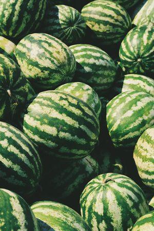 melon-deau